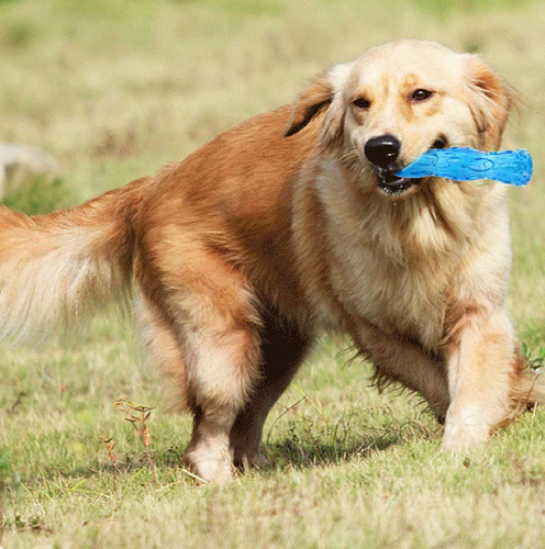 aggressive chew toys for dogs, training chew play fetch b
