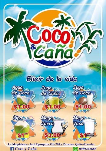 agua de coco - envase biodegradable 420 ml