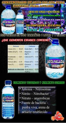 agua especial para animales marinos de agua salada 100% alta