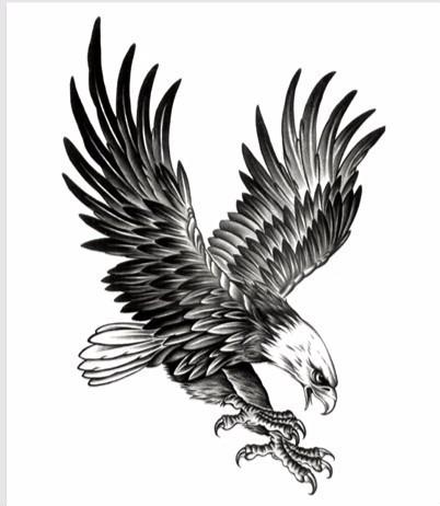 Tatuaje Aguila aguila tatuaje temporal brazo antebrazo pecho espalda ho aym - s/ 18