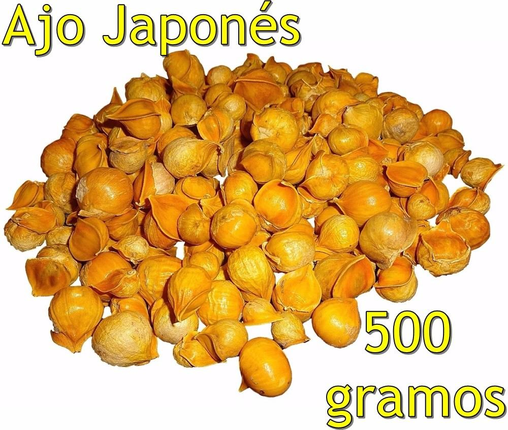 Ajo Japones 500 Gramos Ajo Chino Japanese Garlic Semilla 36500