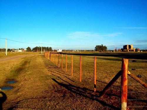 alambrados perimetrales (romboidal-rural) cercos en madera .