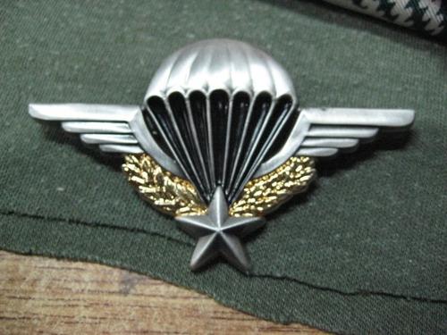 alas originales legion extranjera - paracaidistas