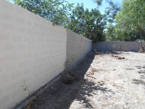 albañil, constructor, pinturas, mantenimiento general