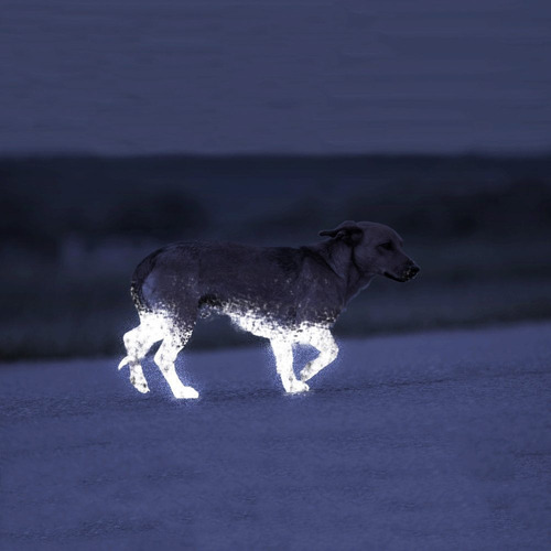albedo 100 spray reflectante, no permanente horse and pets