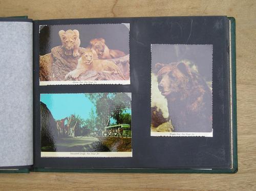 album con fotopostales zoo san diego-disney y canada años 60