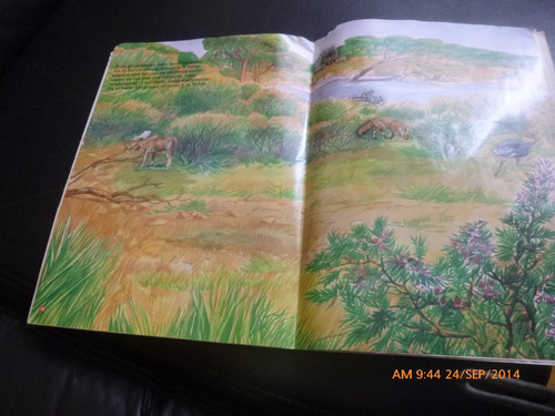 album  panini  animales salvajes   (869