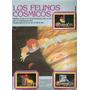 Vendo Album De Los Thundercats Los Felinos Cosmicos En Pdf