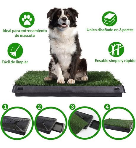 alfombra sanitaria perro