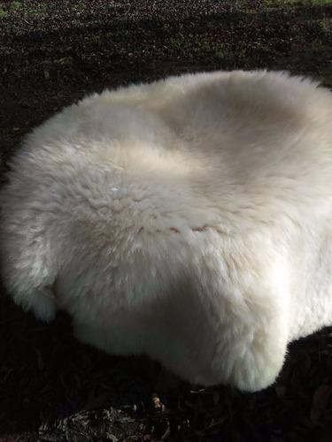 Alfombras de pieles de cordero y oveja magall nico 39 - Pieles de oveja ...