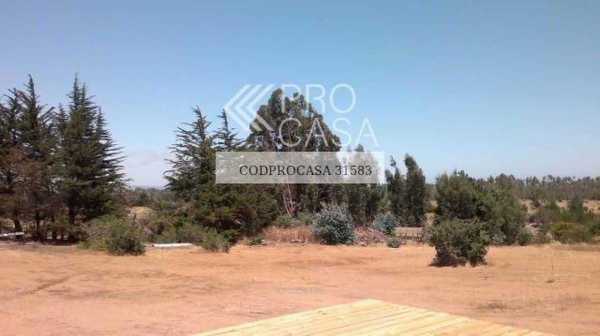 algarrobo / las hijuelas
