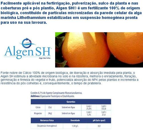 algen sh 10 litros lithothamnium algas fertirrigação foliar