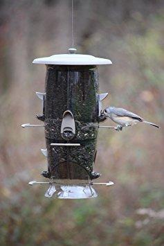 alimentador more birds abundante c/6 puertos, capacidad 6 lb