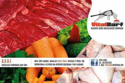 alimento natural para perro dieta barf 10% de descuento