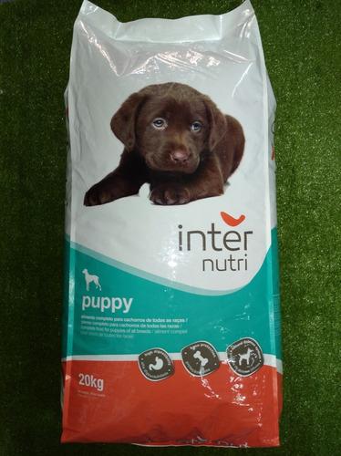 alimento para cachorros  internutri de 20kg