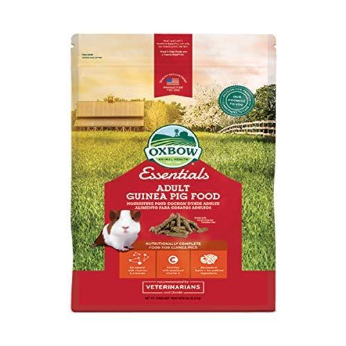 alimento para conejillo de indias timothy basado bolsa de 5