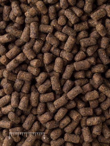 alimento para hurón mazuri  1 kg