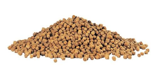 alimento peces ciclidos jumbo pellets aqueon 142 grs x 2 uni