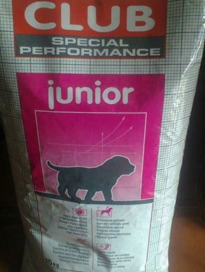 alimento perro cachorro royal canin