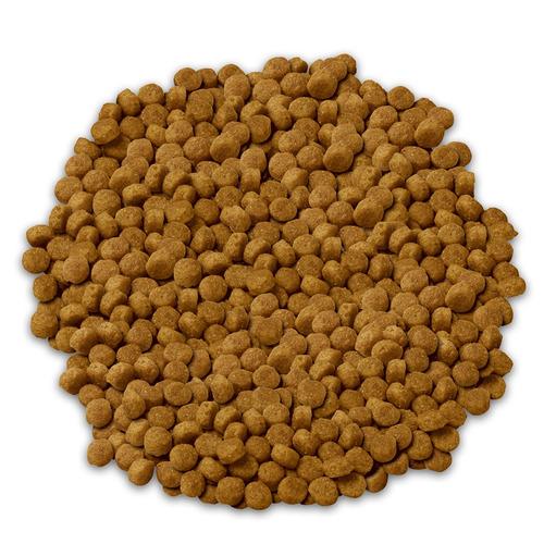 alimento perro croquetas raza pequeña adulto 7.9 kg hill's