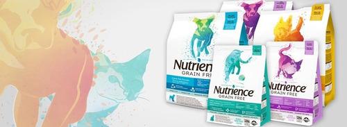 alimento perro nutrience grain free pescado (2,5kgs) + envío