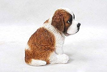 all line sitting saint bernard puppy, 6.75