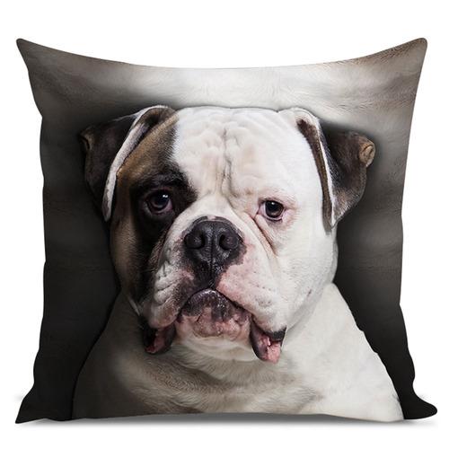 almofada cachorro bulldog americano 45x45cm