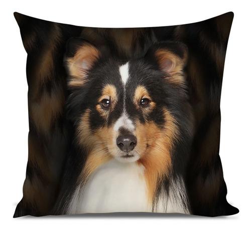 almofada cachorro pastor de shetland 45x45cm