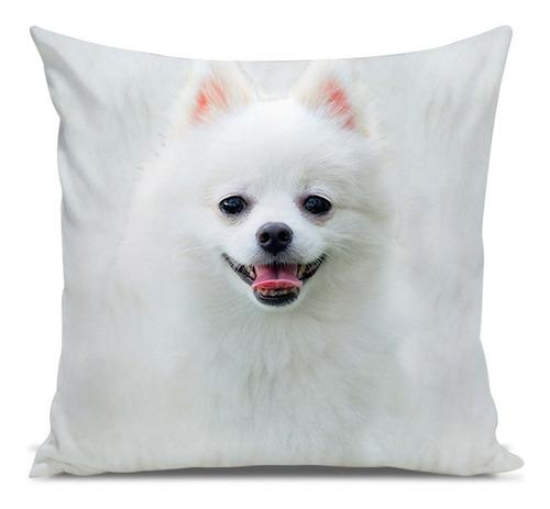 almofada cachorro spitz branco 45x45cm