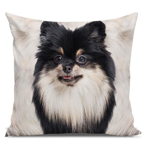 almofada cachorro spitz branco e preto 45x45cm