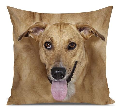 almofada cachorro vira lata 45x45cm