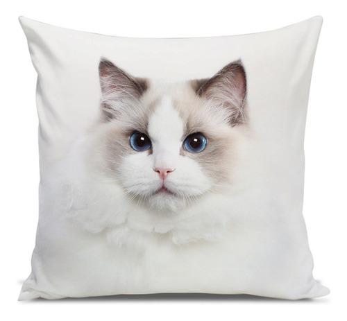 almofada gato ragdoll 45x45cm
