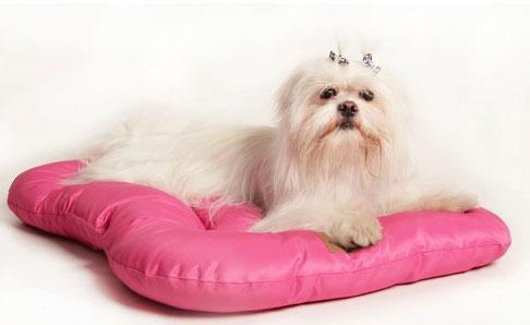 almofada para cachorros t-bone anti pelos cores n° 2