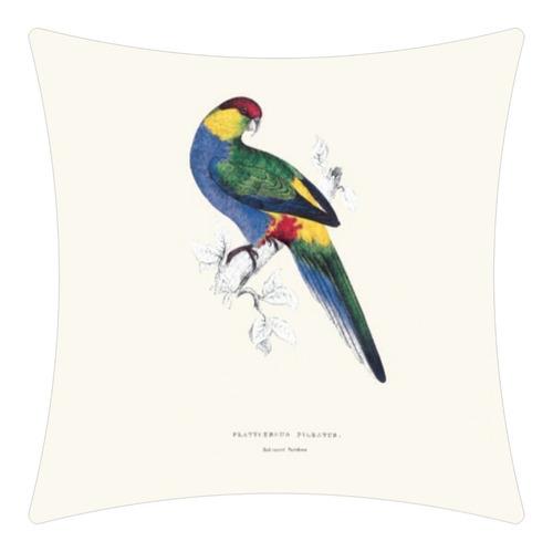 almofada pássaro 4 em brim - estampa digital 50x50 cm