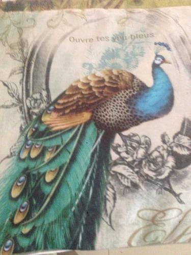 almofadas pavão