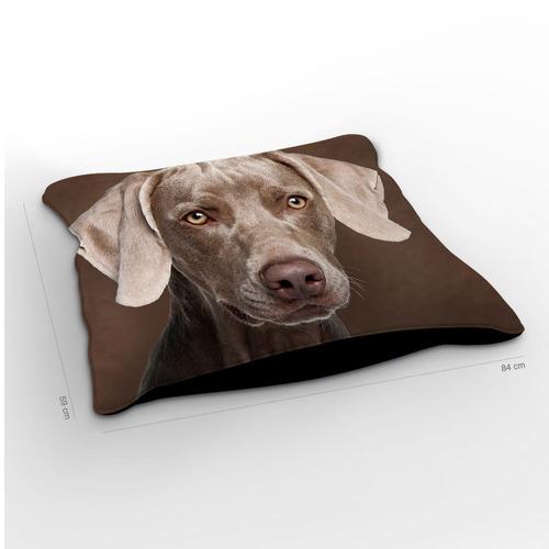 almofadão cachorro weimaraner chocolate 85x60cm