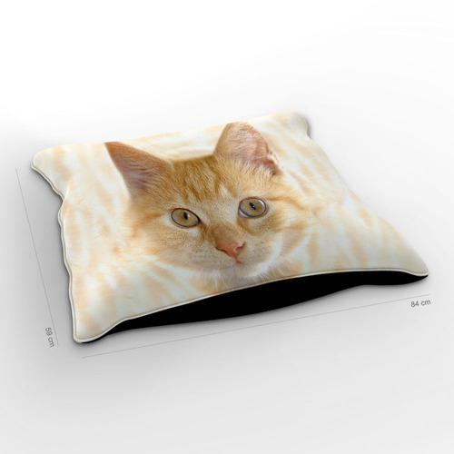 almofadão gato american shorthair amarelo 85x60cm