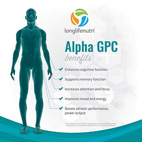 alpha gpc choline supplement 300mg 120 cápsulas vegetarianas