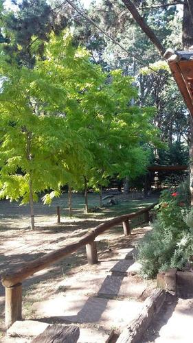 alquiler 4 y 6 personas - bosque del cristo- costa del este