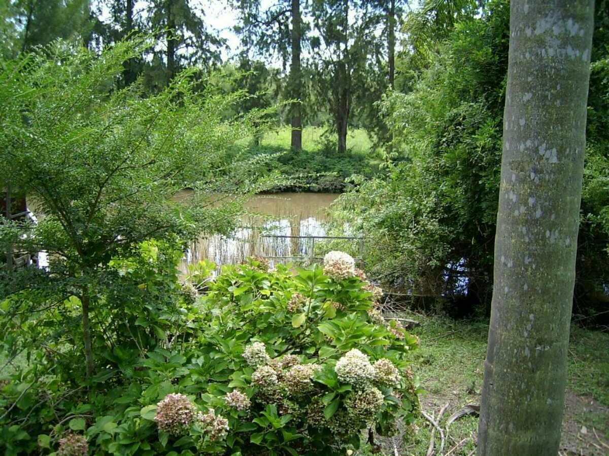 alquiler cabaña delta tigre isla arroyo duraznito