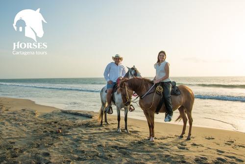 alquiler de caballos para cabalgata en cartagena