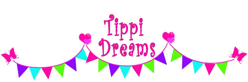 alquiler de carpas indias - carpas tipi - pijama party