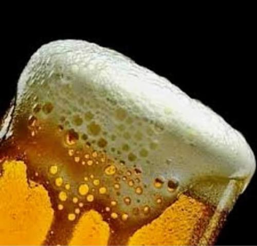 alquiler de choperas, cerveza artesanal
