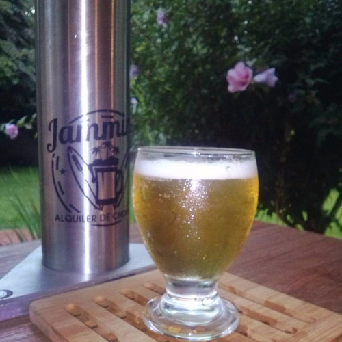 alquiler de choperas de cerveza artesanal