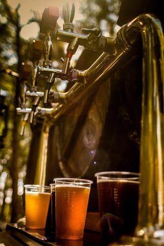 alquiler de choperas y equipos de frío cerveza artesanal
