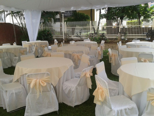 alquiler de sillas mesas palmeras gramas, toldos parabanes