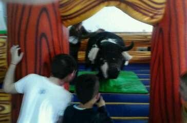 alquiler de toro mecanico  eventos cumpleaños zona sur