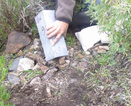 alquiler de trampas sherman para captura de roedores