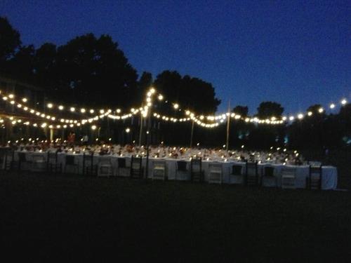alquiler - guirnaldas de luces tipo kermesse -zona norte-
