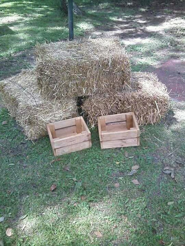 alquiler living rustico de pallets